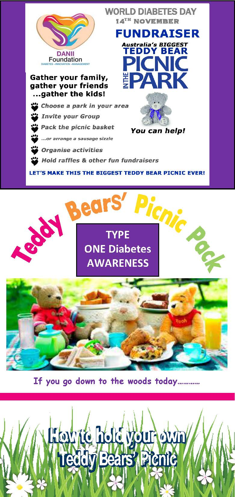 WORLD-DIABETESDAY_Teddy Bears Picnic-Picnic-Pack-Support-DANII_Page_1